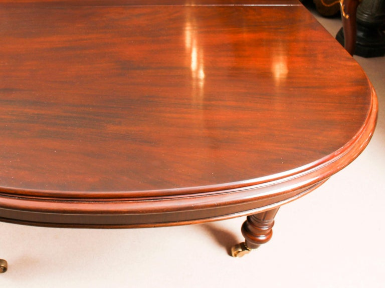 Antique Victorian D-End Mahogany Dining Table 19th Century and 10 Chairs 2