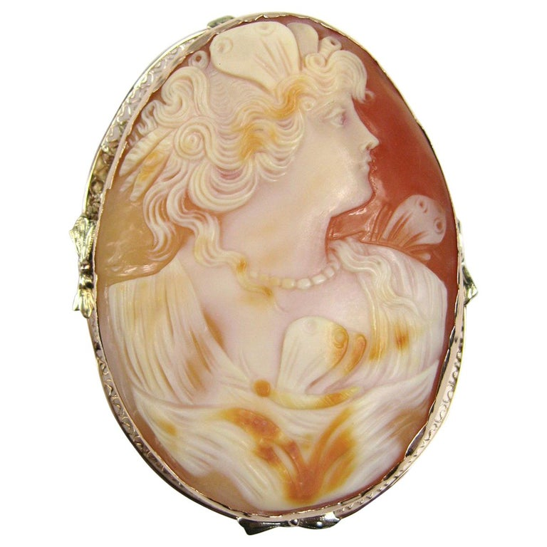 Antique 14 Karat Tri-Colored Gold Cameo Brooch Pendant For Sale