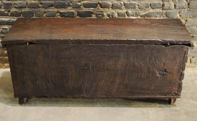 Antique 17th Century Spanish Chestnut Carved Trunk or Chest For Sale 7