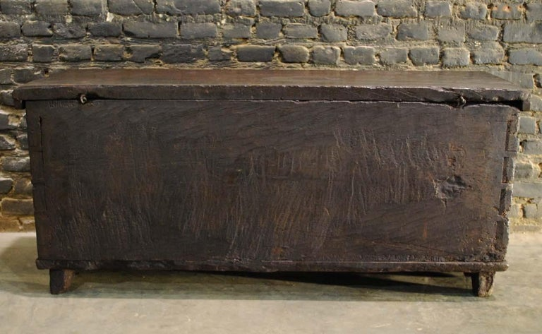Antique 17th Century Spanish Chestnut Carved Trunk or Chest For Sale 8