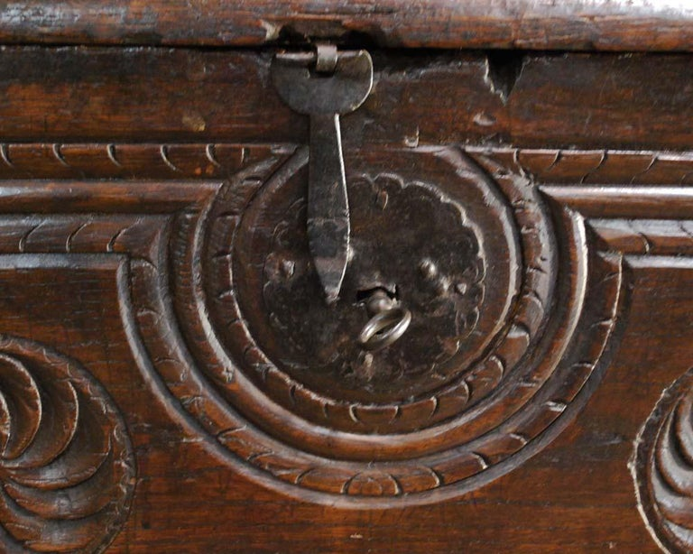 Antique 17th Century Spanish Chestnut Carved Trunk or Chest For Sale 1