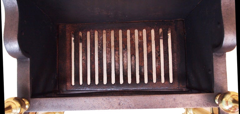 English Antique 19th Century Brass and Iron Fire Grate For Sale