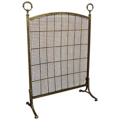 Antique 19th Century Bronze and Brass Firescreen with Hand Woven Mint Wire Mesh