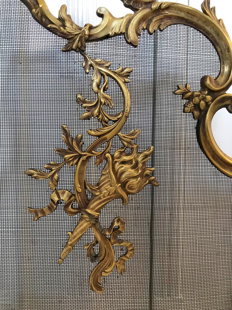 French Antique 19th Century Bronze and Wrought Iron Firescreen with Mint Wire Mesh For Sale