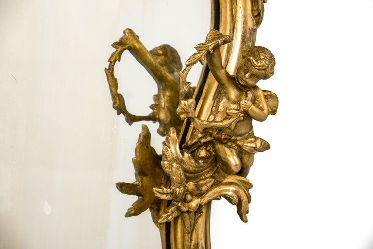 Carved Antique 19th Century French Gold Rococo Wall Mirror with Cherubs or Putti For Sale