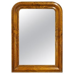 Antique 19th Century French Grain Painted Rosewood Louis Philippe Mirror