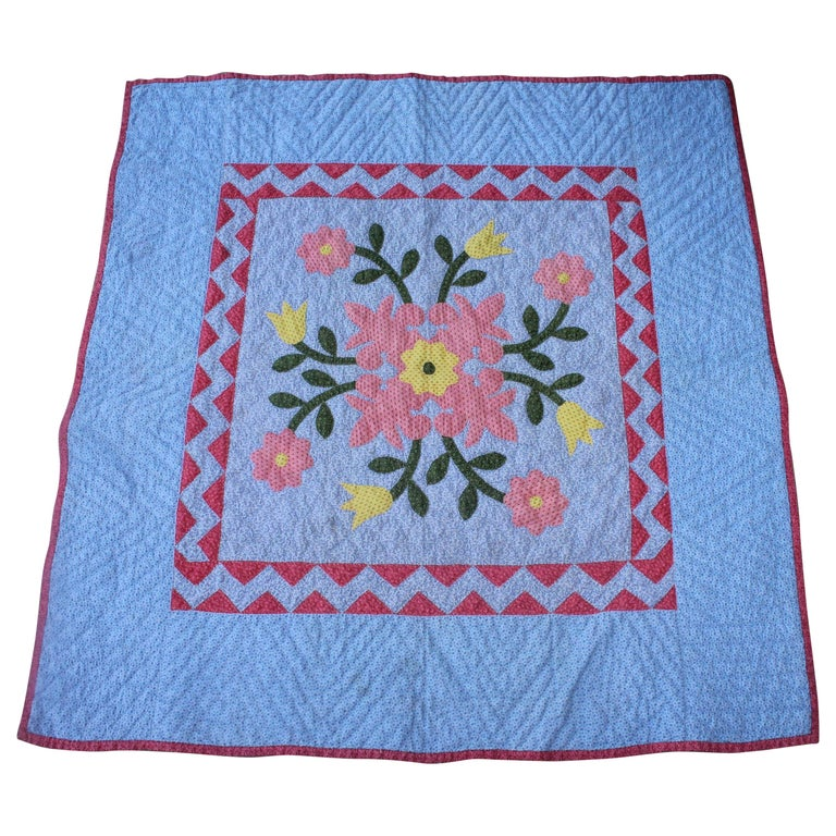 Antique 19th Century Crib Quilt Applique from Berks County Pennsylvania For Sale