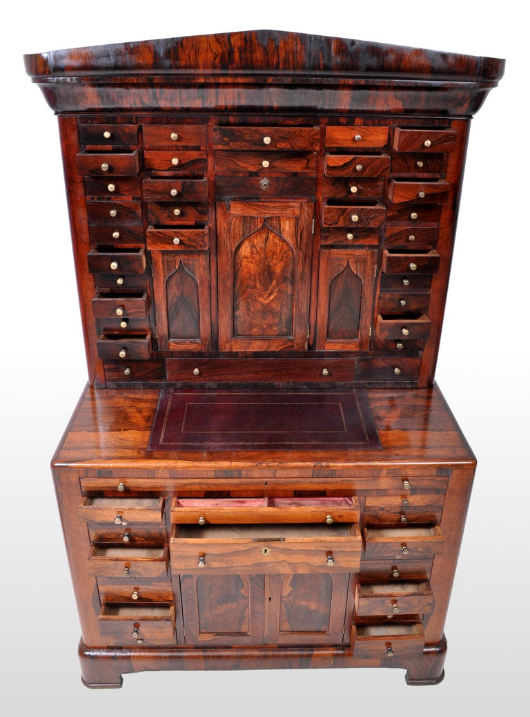 Antique American Empire Rosewood Dental / Medical Cabinet, circa 1820 For Sale 6