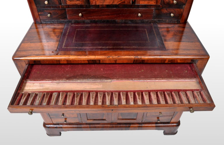 Antique American Empire Rosewood Dental / Medical Cabinet, circa 1820 For Sale 7