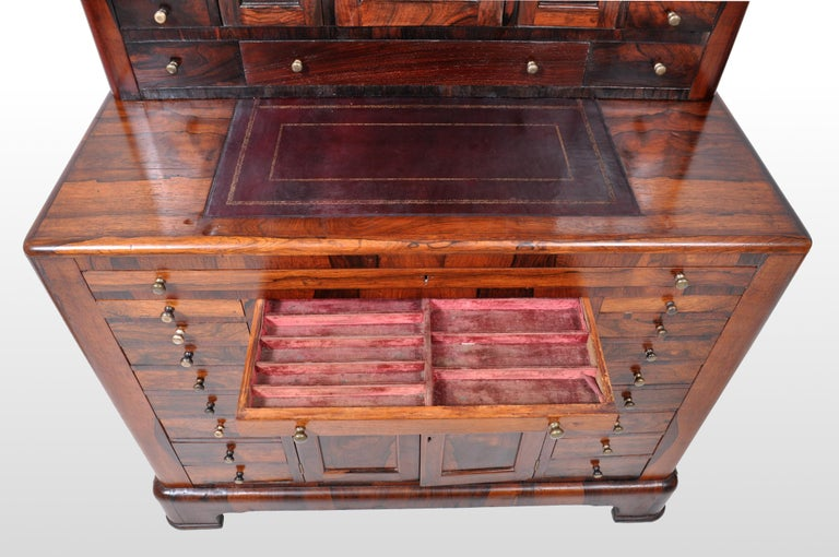 Antique American Empire Rosewood Dental / Medical Cabinet, circa 1820 For Sale 8