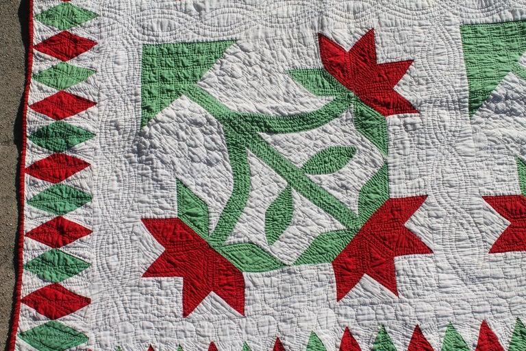 Antiker applique quilt 19. jahrhundert carolina lilly im angebot