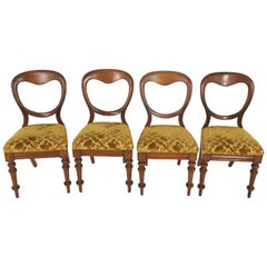 Antique Balloon Back Mahogany Chairs, Set of Four, Scotland 1890, B1690