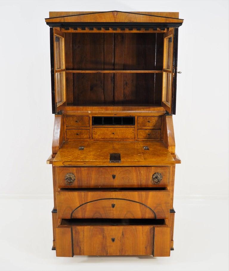 Antique Biedermeier Cupboard For Sale 8