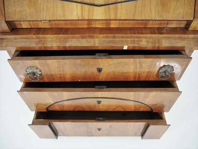 Antique Biedermeier Cupboard For Sale 10