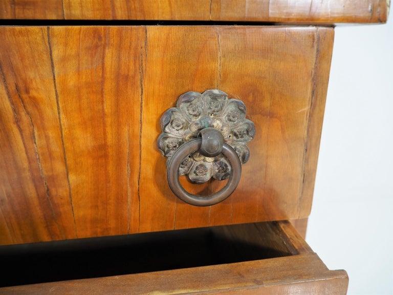Antique Biedermeier Cupboard For Sale 11