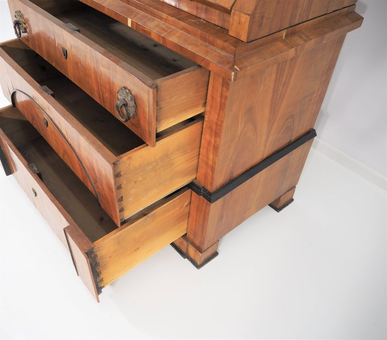 Antique Biedermeier Cupboard For Sale 12