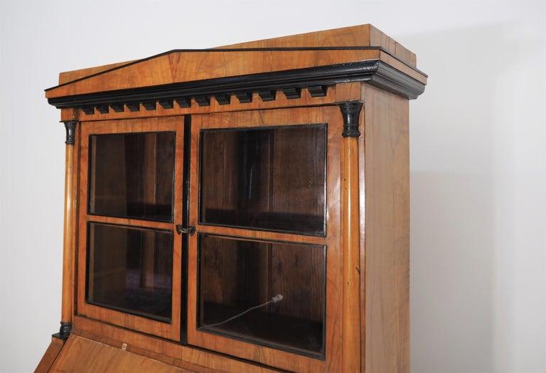 Antique Biedermeier Cupboard For Sale 13