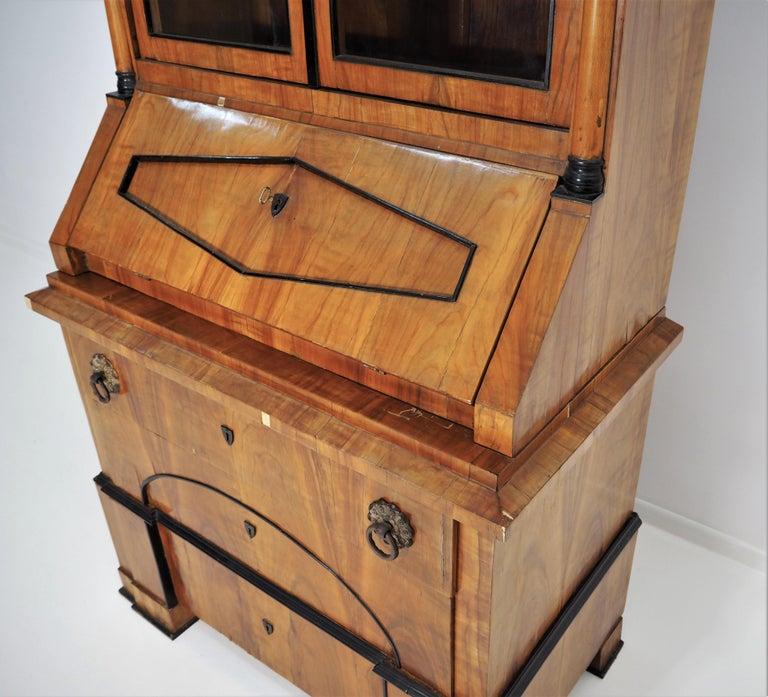 Antique Biedermeier Cupboard For Sale 14