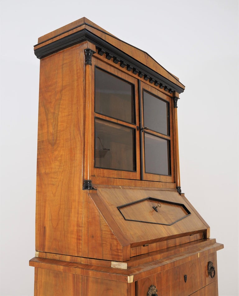 Antique Biedermeier Cupboard For Sale 2