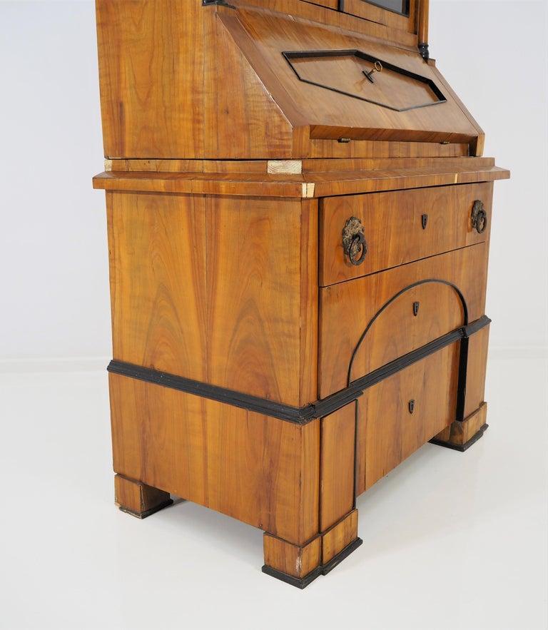 Antique Biedermeier Cupboard For Sale 3