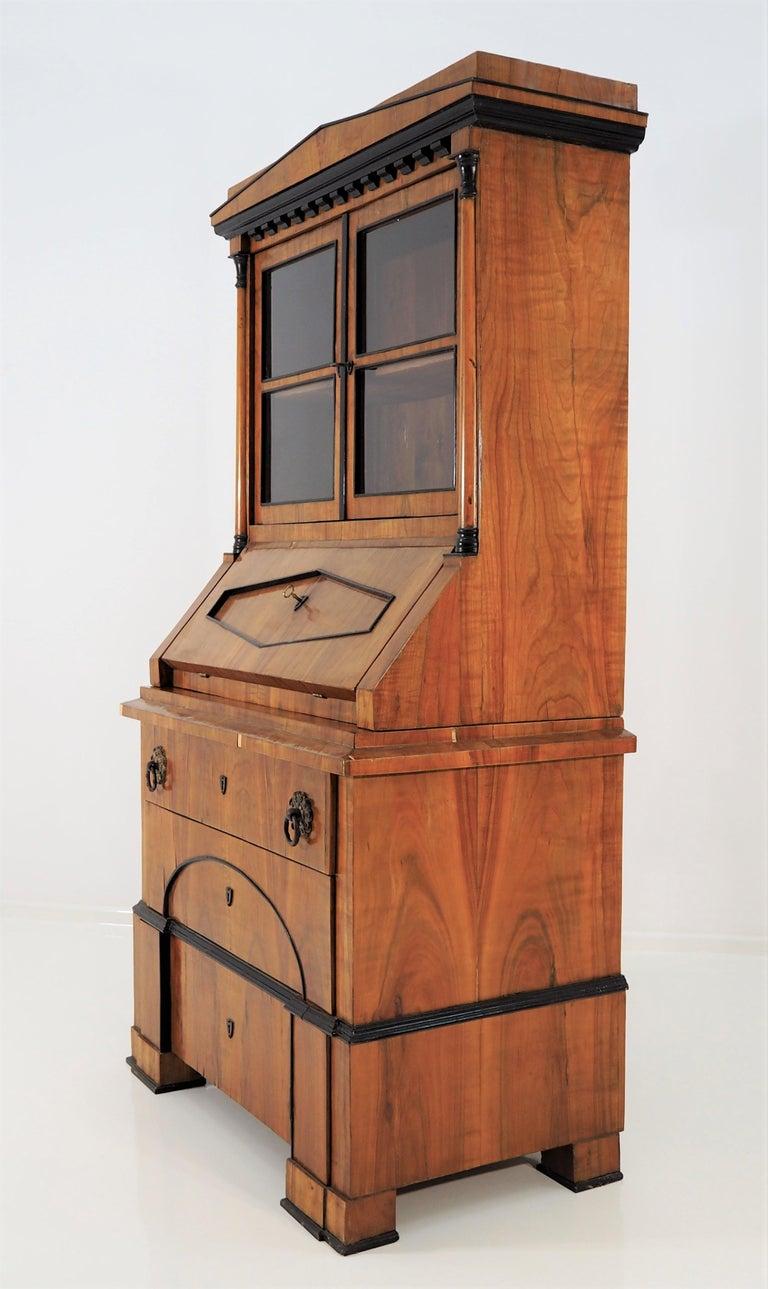 Antique Biedermeier Cupboard For Sale 4