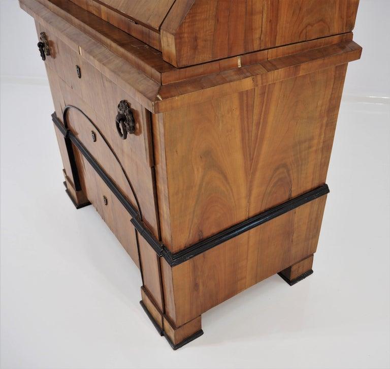 Antique Biedermeier Cupboard For Sale 5