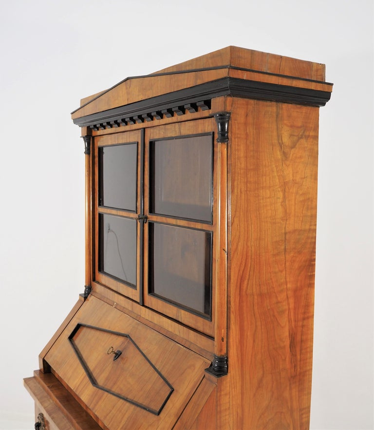 Antique Biedermeier Cupboard For Sale 6