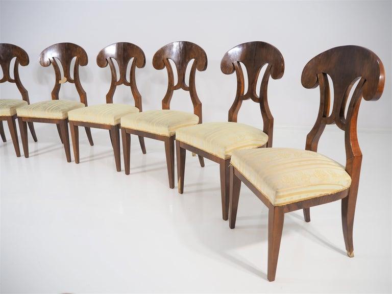 Set of 6 Biedermeier chairs veneered with walnut.