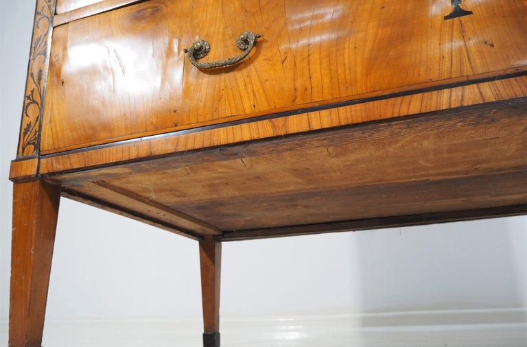 Antique Biedermeier Secretaire For Sale 5