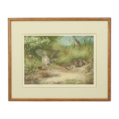 Antique Bird Print, Signed by Archibald Thorburn, Partridge, Spring