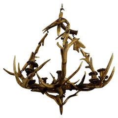 Antique Black Forest Antler Candle Luster, 1900