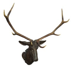 Antique Black Forest Carved Stag Head in Baroque Style, Ca. 1880