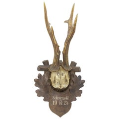 Antique Black Forest Deer Antler Trophy on Wood Carved Plaque, German, 1925