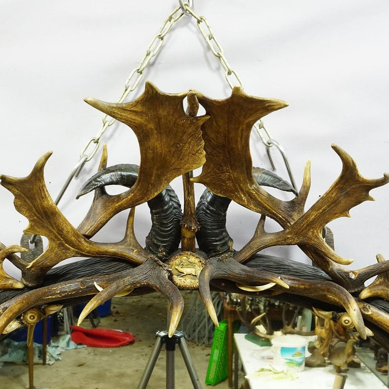 A very large and impressive antler mirror decorated with great carved and turned horn roses and antler pieces of the stag, fallow deer, deer, mountain sheep and Virginia deer. Germany, black forest circa 1990.  Measures: Width: 37.4