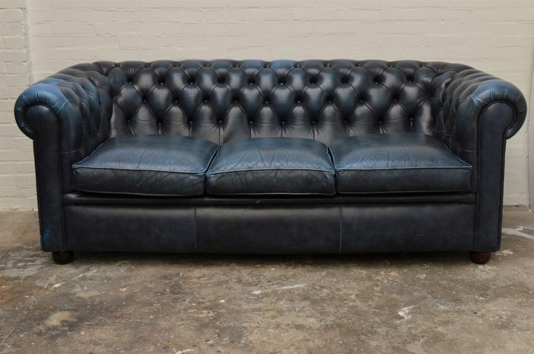 Three Seat Chesterfield Sofa In Antique Blue Leather Nice Original State A Well