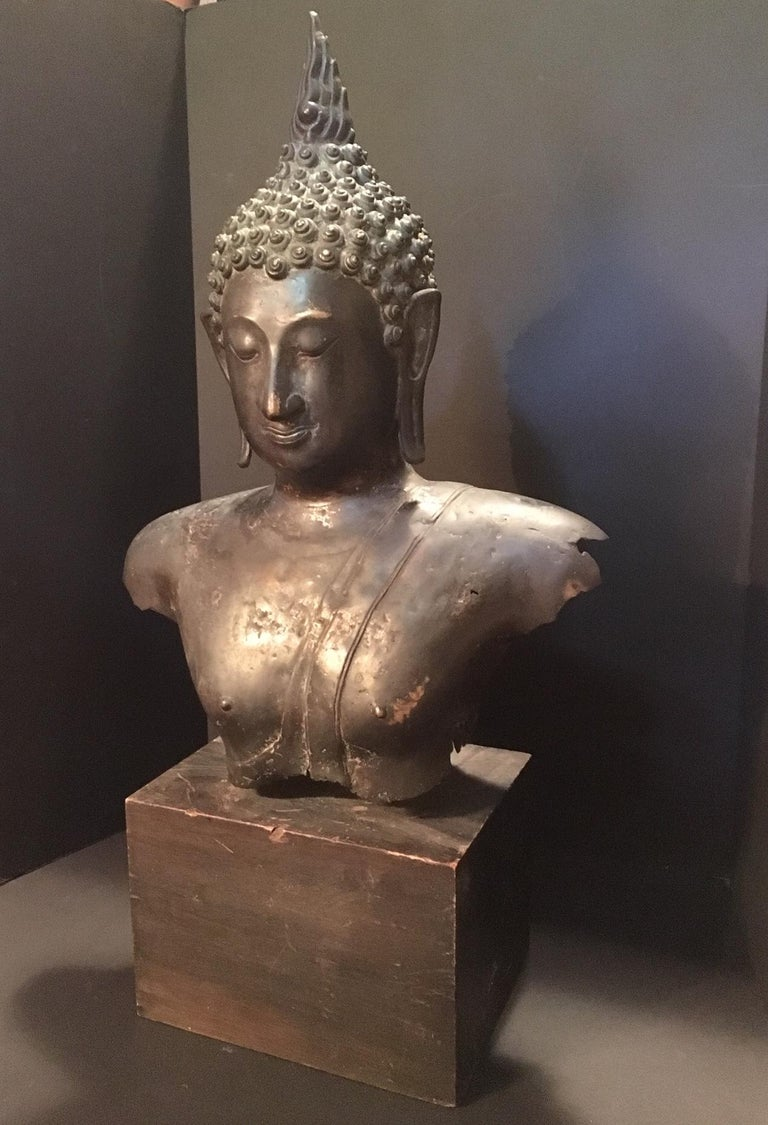 This is a finely modeled and perfectly casted dark green patinated bust of Buddha. He has a serene smile, elongated eyes and long earlobes. The hair is fashioned in snail shell curls. There are still traces of gold visible on the body. The upper