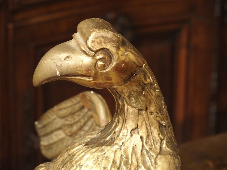 Antique Carved Giltwood Eagle Statue 12