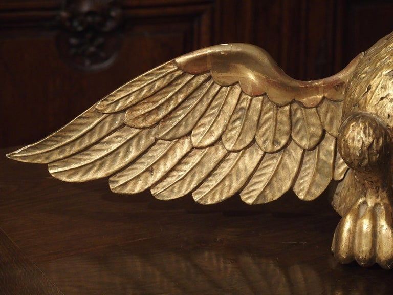 Antique Carved Giltwood Eagle Statue 7