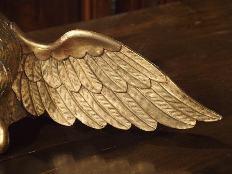 Antique Carved Giltwood Eagle Statue 8