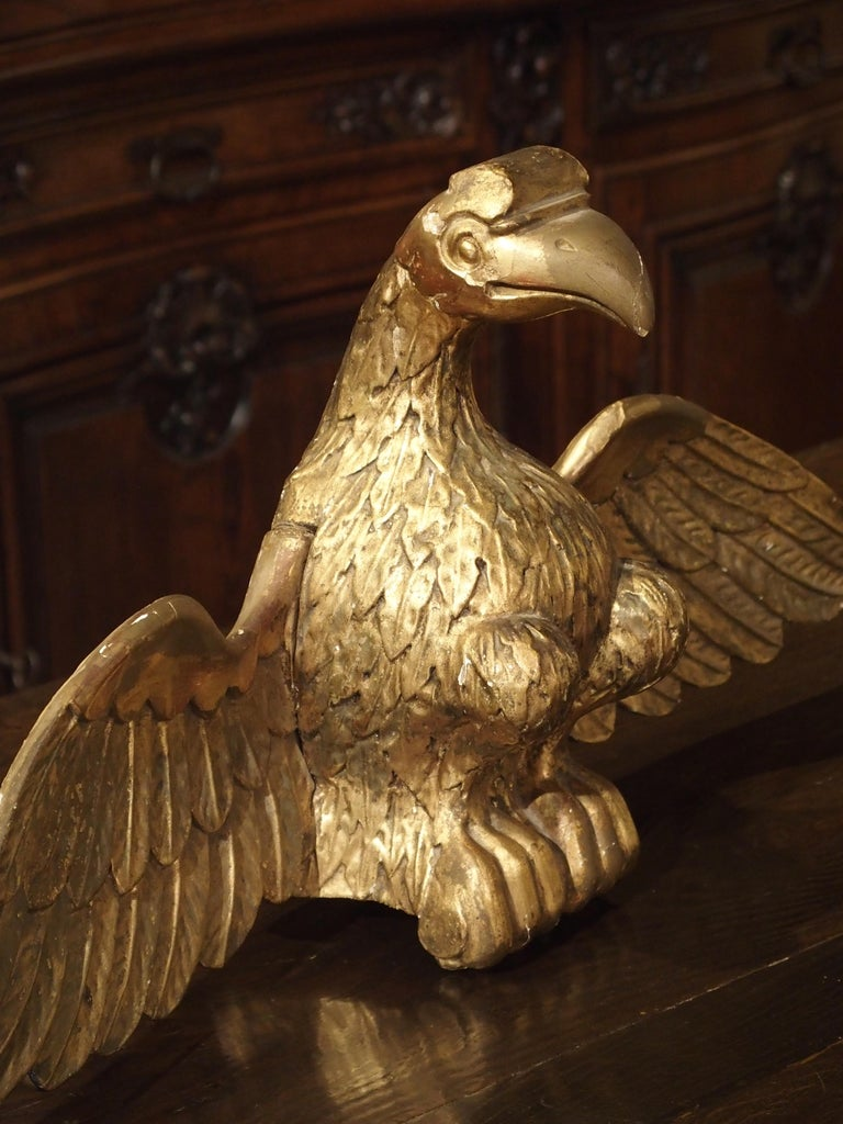 Antique Carved Giltwood Eagle Statue 9