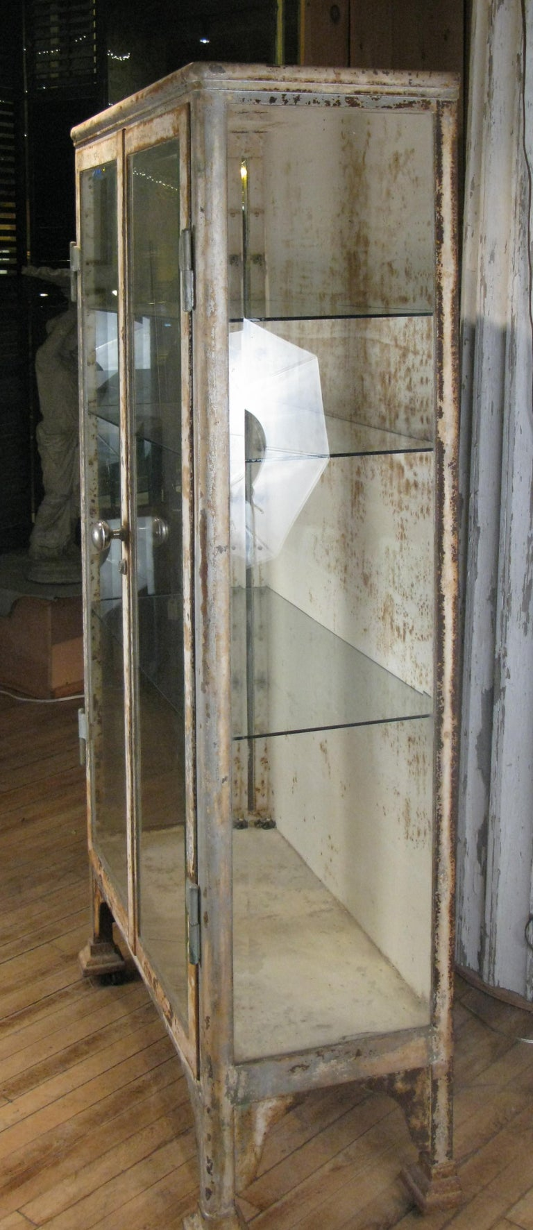 Antique Cast Iron and Glass Apothecary Cabinet For Sale 2