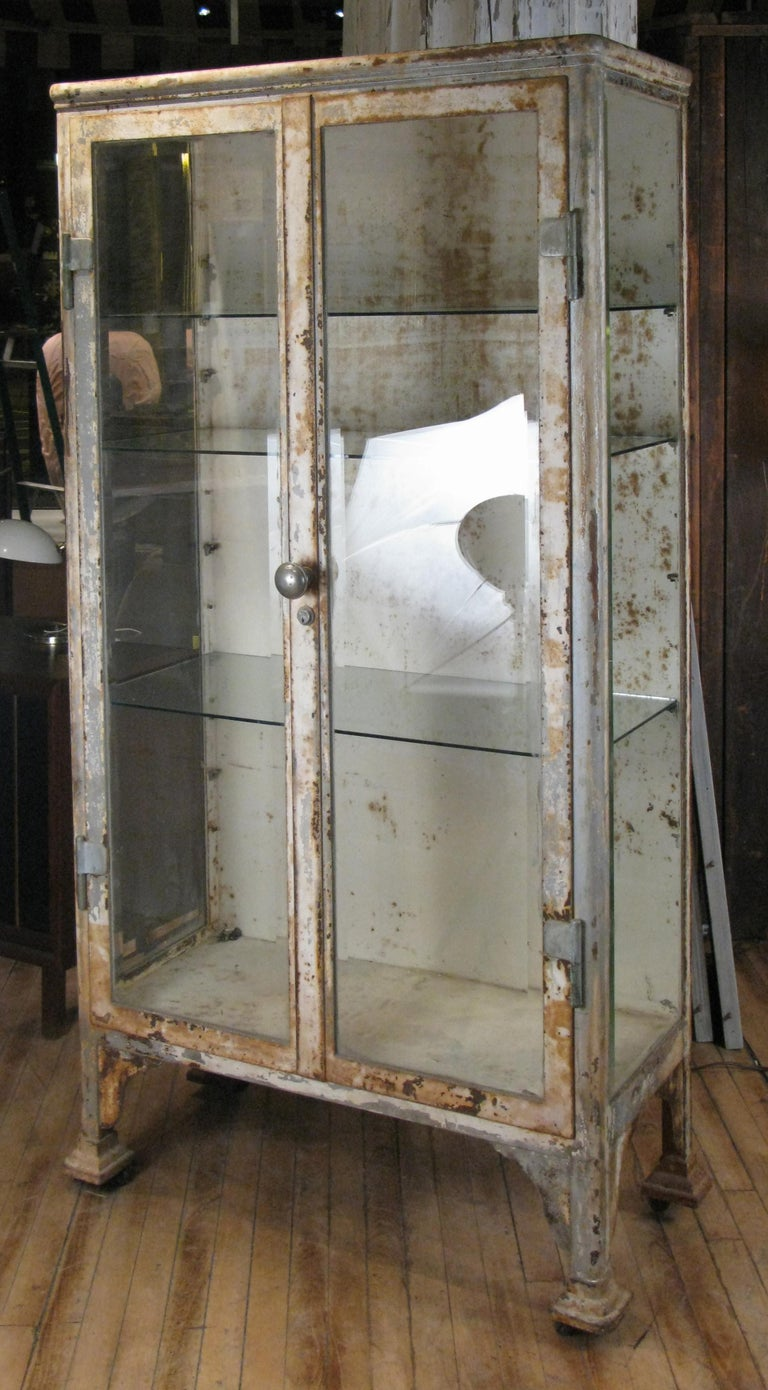 Antique Cast Iron and Glass Apothecary Cabinet For Sale 3