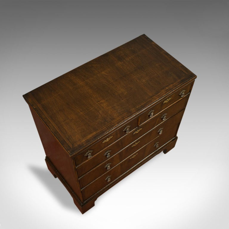 Antique Chest of Drawers, English, Regency, Mahogany, Chest, Early 19th Century For Sale 2