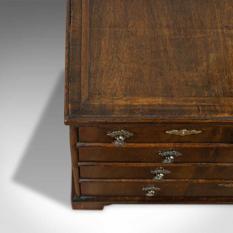 Antique Chest of Drawers, English, Regency, Mahogany, Chest, Early 19th Century For Sale 4