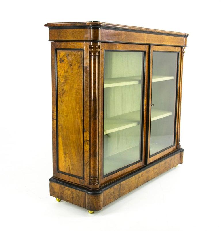 Scottish Antique China Cabinet, Victorian Bookcase, Burr Walnut Cabinet,  Scotland For Sale - Antique China Cabinet, Victorian Bookcase, Burr Walnut Cabinet