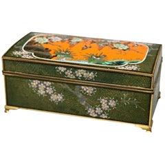 Antique Chinese Bronze Floral Garden Cloisonne Enameled Box, circa 1900