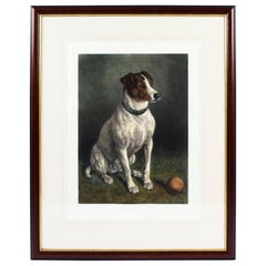 """Antique Colored Engraving Print """"Please Throw It"""" Frank Patton 1920s"""