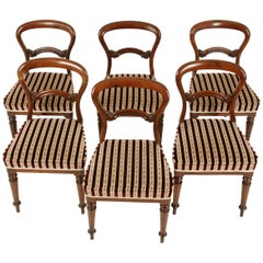 Antique Dining Chairs, 6 Balloon Back Chairs, Walnut, Victorian, 1880, B1573