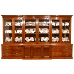 Antique English Break-Front Bibliotheque Bookcase in Mahogany, circa 1870