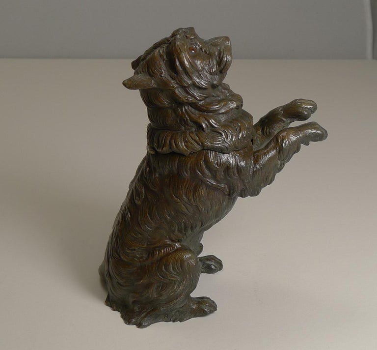About as charming as they get, this a stunning desk-top inkwell or a delightful dog standing on his hind legs. The quality of the casting is superb and retaining the original patina.